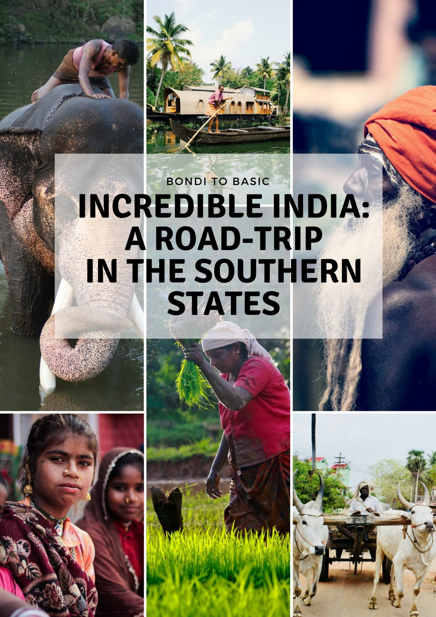 India road trip - an amazing trip trough Kerala and Tamil Nadu