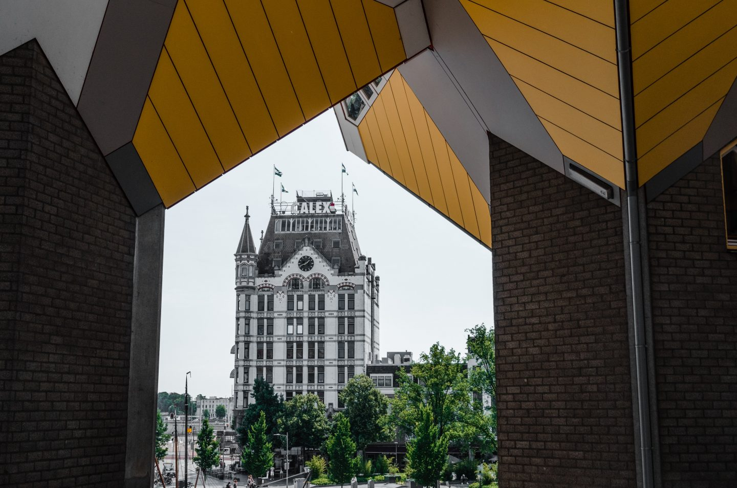 One day guide to Rotterdam