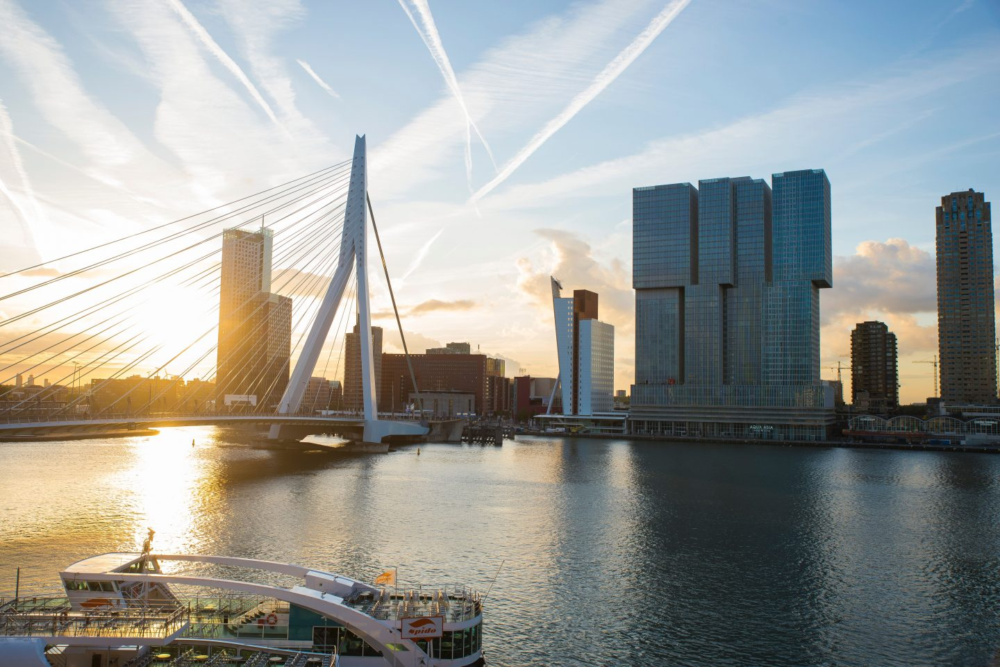 The Erasmus Bridge A must see when you are one day in Rotterdam