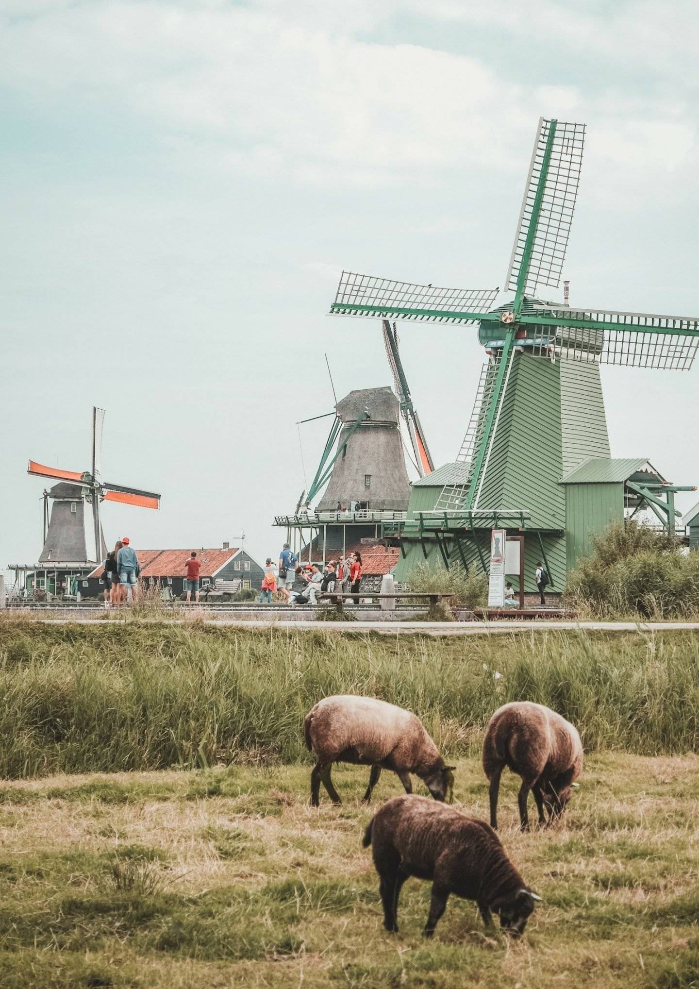 The Netherlands in Pictures