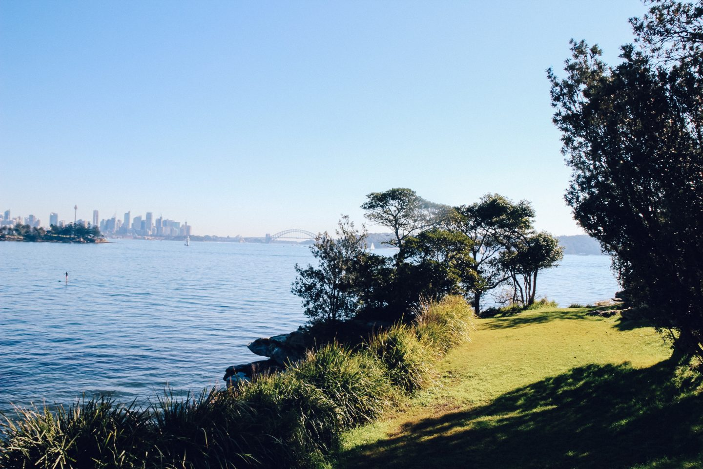 watson bay to rose bay walk