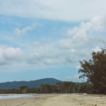 Daintree Rainforest In far North Queensland. Itinerary