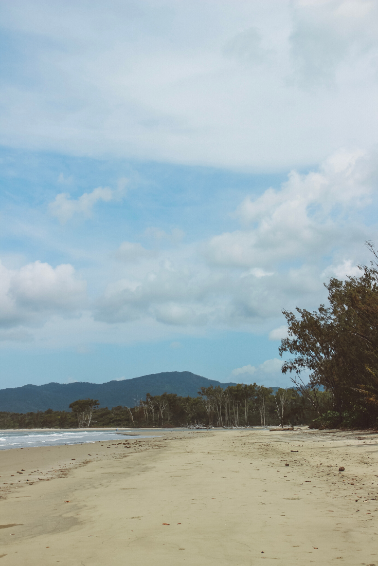 2 DAYS IN DAINTREE RAINFOREST | ITINERARY