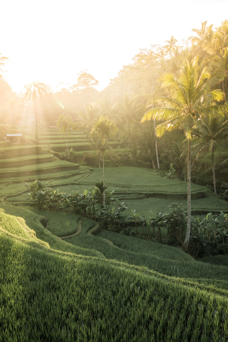 An extensive Bali itinerary | 7 days in paradise