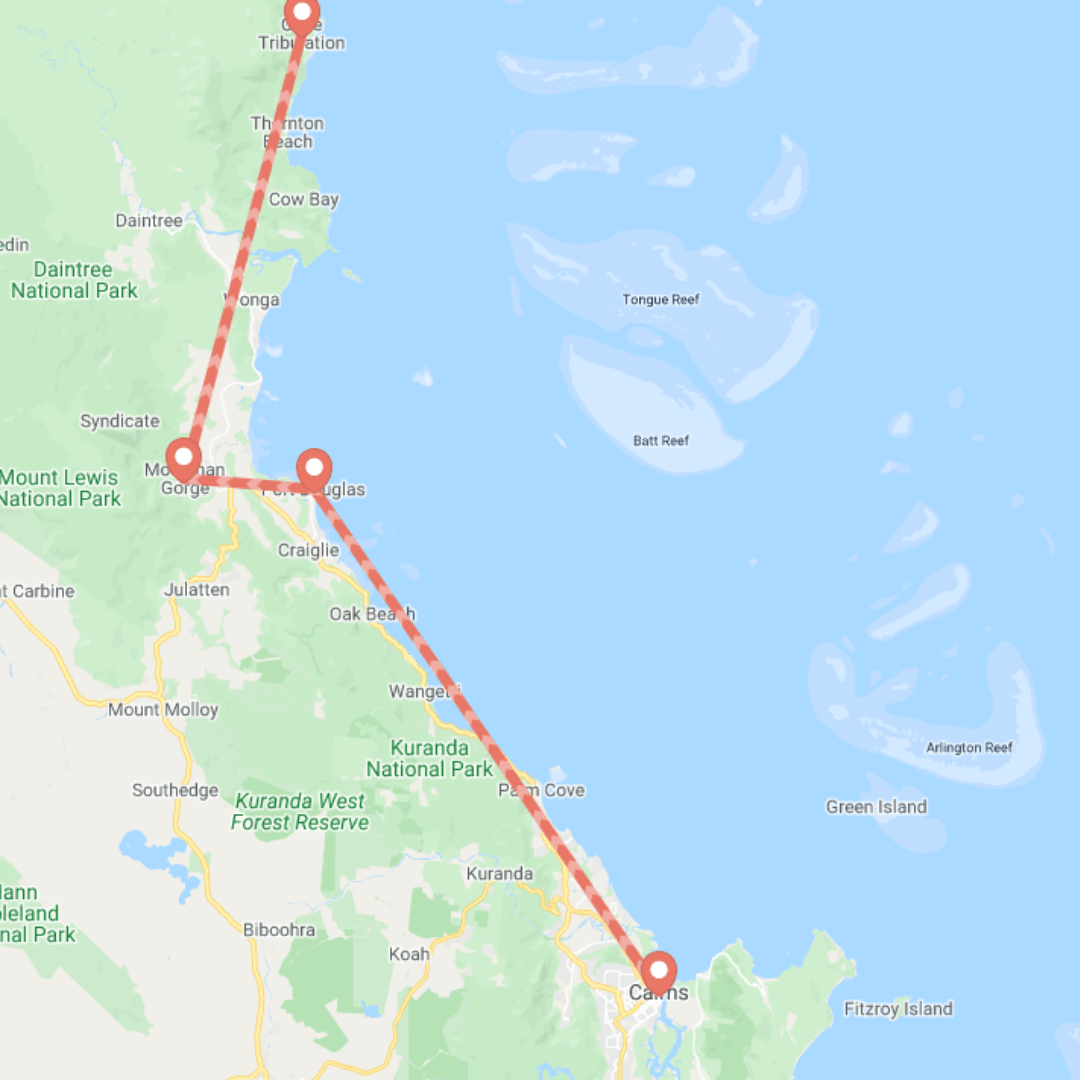 Cairns to Cape Tribulation Road Trip