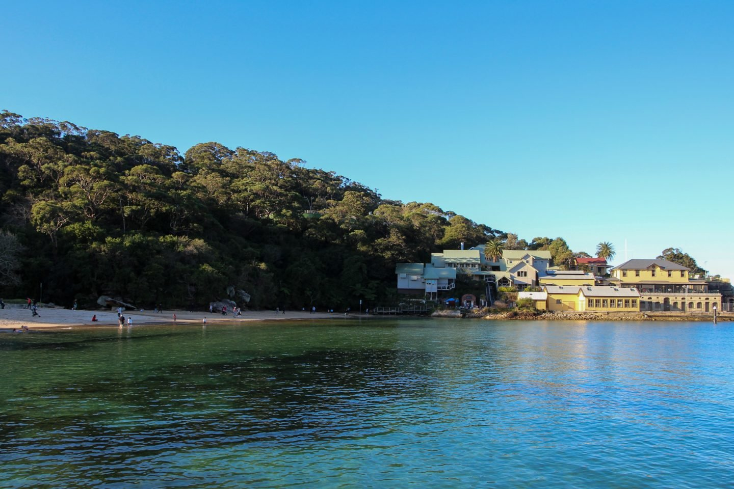 Cliftons Gardens is the last stop from Bradley's head to Chowder Bay WalkJPG