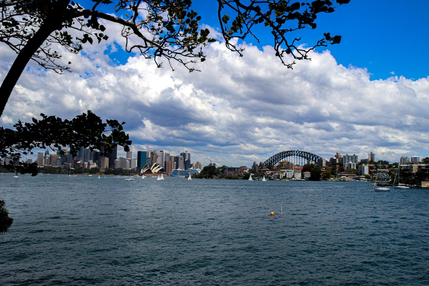 Cremorne Point Walk