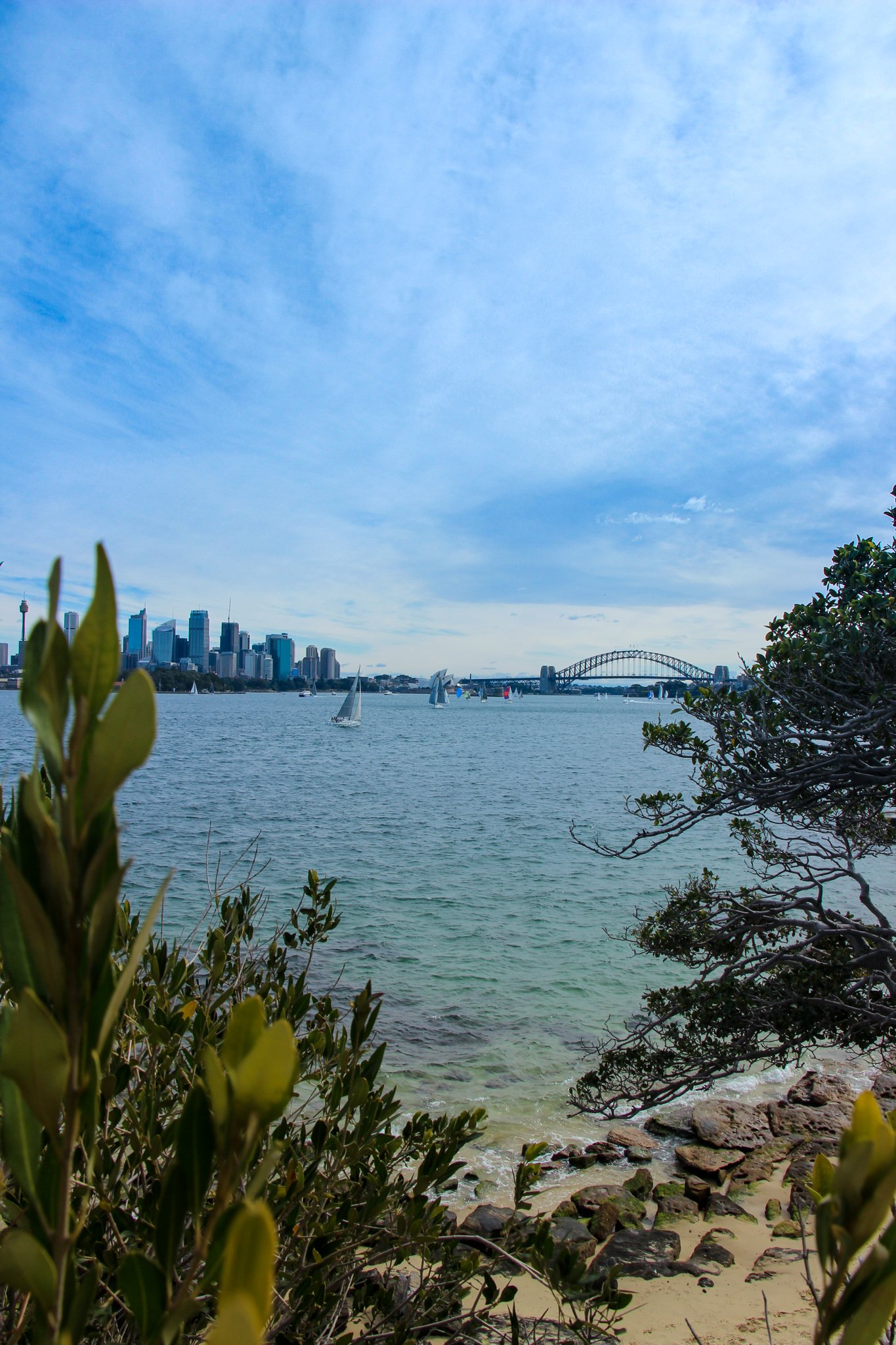 Taronga Zoo to Balmoral Beach Harbour Walk